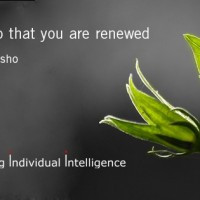 osho-quote-01