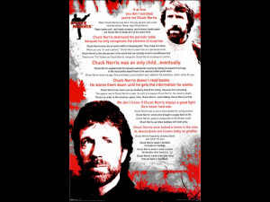 Chuck Norris: Fan Made Gallery