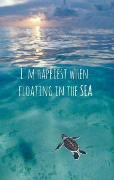 Sea & Ocean Quotes