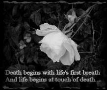 Dark Romanticism Quotes