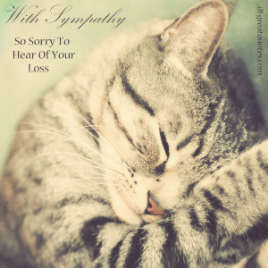 ... So Sorry To Hear Of Your Loss - Sympathy Card Messages - Pet Loss