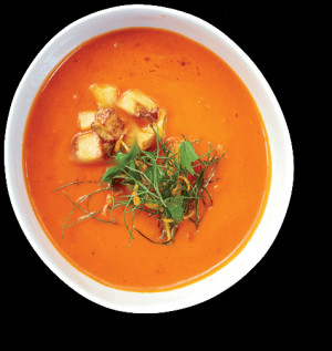 Soups Quotes Sources Details Contact