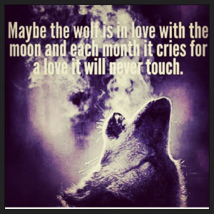 Wolf Love Quotes #lovequotes #love #wolf #
