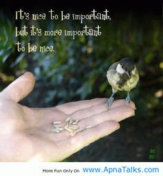 bird quotes more kindness matter birds quotes quotes 3 little birds ...