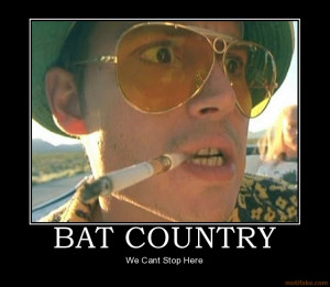 bat-country-fear-and-loathing-las-vegas-drugs-lsd-demotivational ...