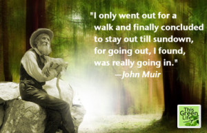 Walking Quotes by Muir, Thoreau, et. al.