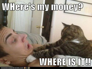funny cat amusing pictures funny mony funny funny movie quotes funny ...