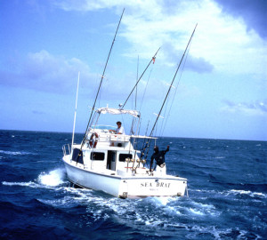 Images of Deep Sea Fishing Quotes