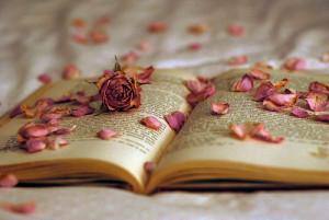 beautiful, book, creative, lol, roses, want