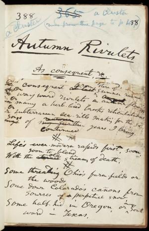 Walt Whitman Leaves Of Grass Poem 1855