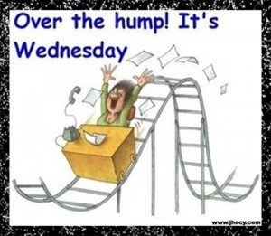 ... Funny Quotes, Happy Humpday Quotes, Crazy Weekend Quotes, Wednesday