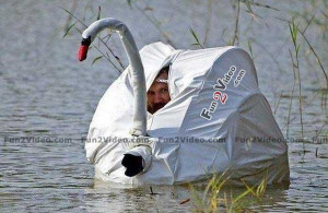 ... funny trick which will help you for duck hunting. This funny and