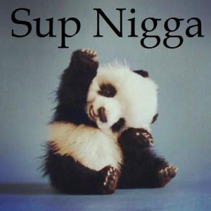panda quotes tumblr