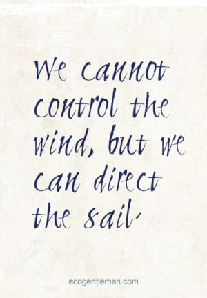 We cannot control the wind but we can direct the sail - graphic quotes ...