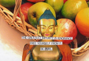 Buddha, quotes, sayings, pure, ignorance, positive