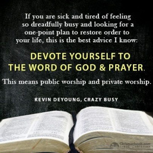 Kevin DeYoung - Crazy Busy: A (Mercifully) Short Book About a (Really ...