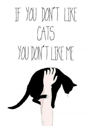 If you don't like cats...