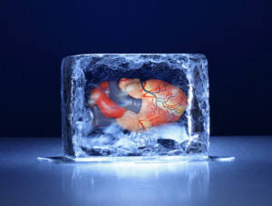 Inside a Human Heart with a Block of Ice