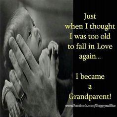 grandparents,grandchildren,granddaughters,grandsons, grandma quotes ...