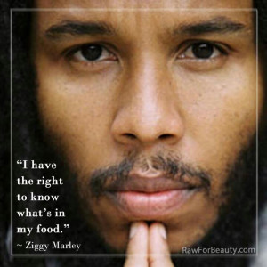 Ziggy Marley quote.