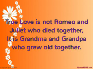 Romeo And Juliet Love Or Infatuation Essay