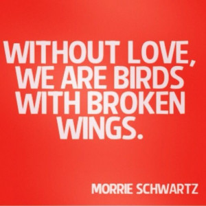 Tuesdays With Morrie Quote.