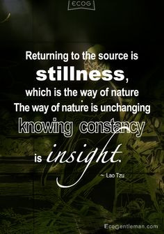 Lao Tzu quotes-Returning to the source is stillness which is the way ...