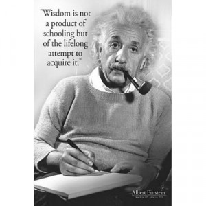 Albert Einstein Wisdom Quote Poster - 24x36