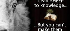 You Can Lead a Sheep to Knowledge, but You Can't Make Them Think