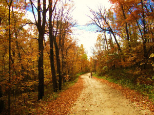 Autumn Poems And Quotes