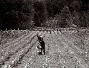 dust-bowl-farmer