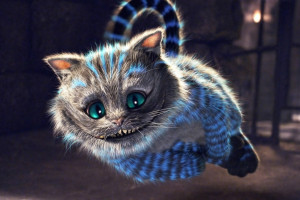 Cheshire Cat in flight