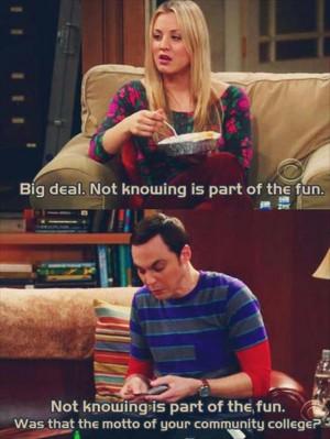 the big bang theory, funny sheldon cooper