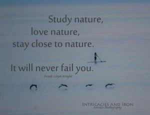 Study Nature - Frank Lloyd Wright Quote