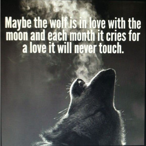 Wolf quote Quotes