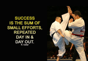 quotes + karate by nadin4e