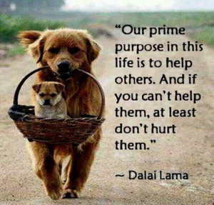 Help others....don't hurt them!