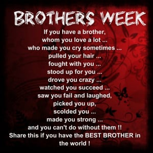 quotes about older brothers from sister quotes about older brothers ...