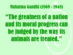 gandhi animal rights quotes includes a gandhi on treatment of animals ...