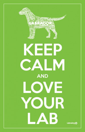 Keep Calm & love your lab