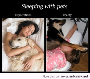 Sleeping with pets / Funny Pictures, Funny Quotes – Photos, Quotes ...