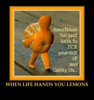 LIFE HANDS YOU LEMONS-FUNNY ORANGE-INSPIRATIONAL QUOTE