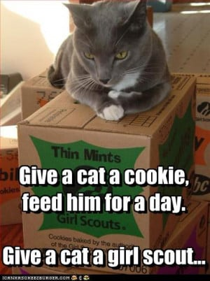 LOL cat with girl scout cookies