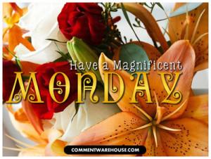 ... magnificent-monday/][img]alignnone size-full wp-image-55377[/img][/url