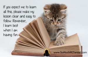 Cat Teaching When teaching, remember clear