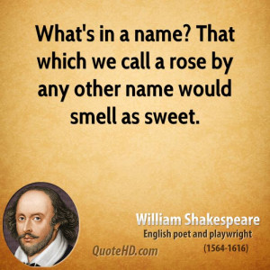 What's in a name? That which we call a rose by any other name would ...