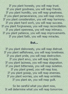 What You Sow, You Will Reap!