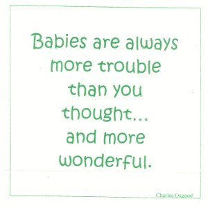 Talking Quilts Baby Quotes, 12 squares, 6 1/2