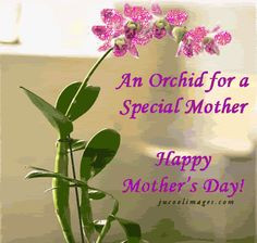 happy mothers day to all moms More