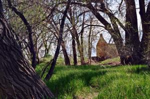 robert strauss cabin fort collins colorado rural